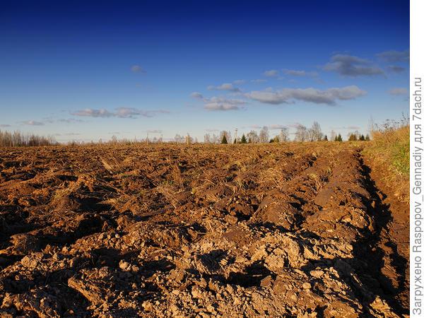 Почва истощена пахатой