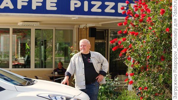 Каллистемон у пиццерии