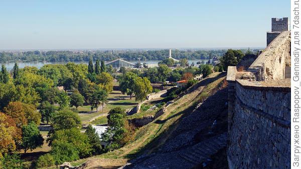 Вид на реку и прибрежный парк со стен Калемегдана