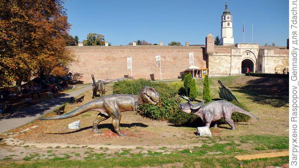 Рычащие динозавры на детской площадке