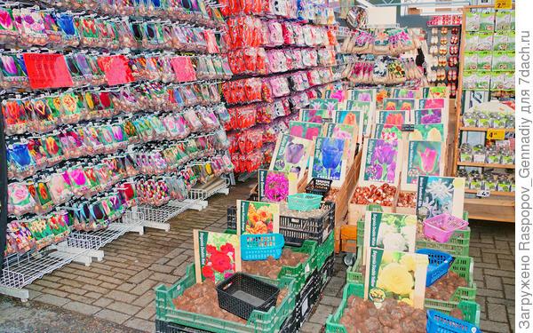 на цветочном  рынке Амстердама есть все