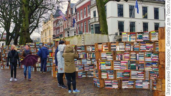 И даже книги есть
