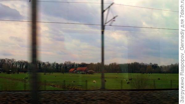 Сельская Голландия не кончается