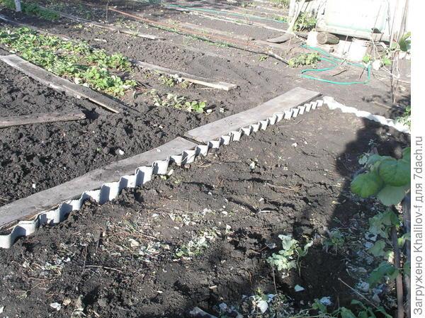 """Ограничительные барьеры, чтобы отпрыски малины """"не убегали"""" на грядки моркови, лука и. т. д."""