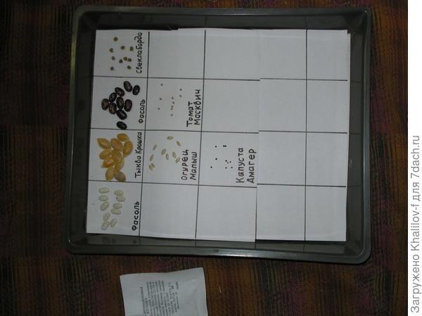 Определение всхожести семян