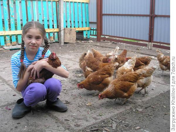 Внучка Наиля с курочками