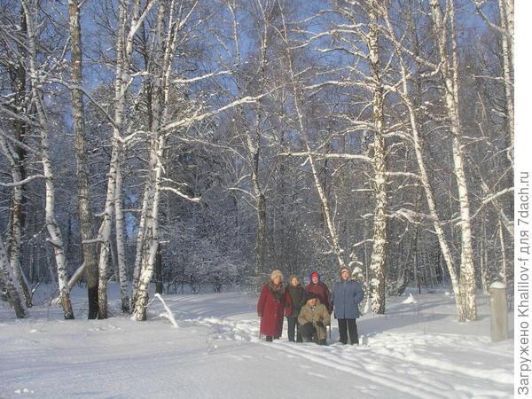 пенсионеры на прогулке в зимнем лесу