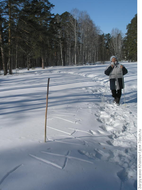 прогулка по зимнему лесу. вот такая палка.