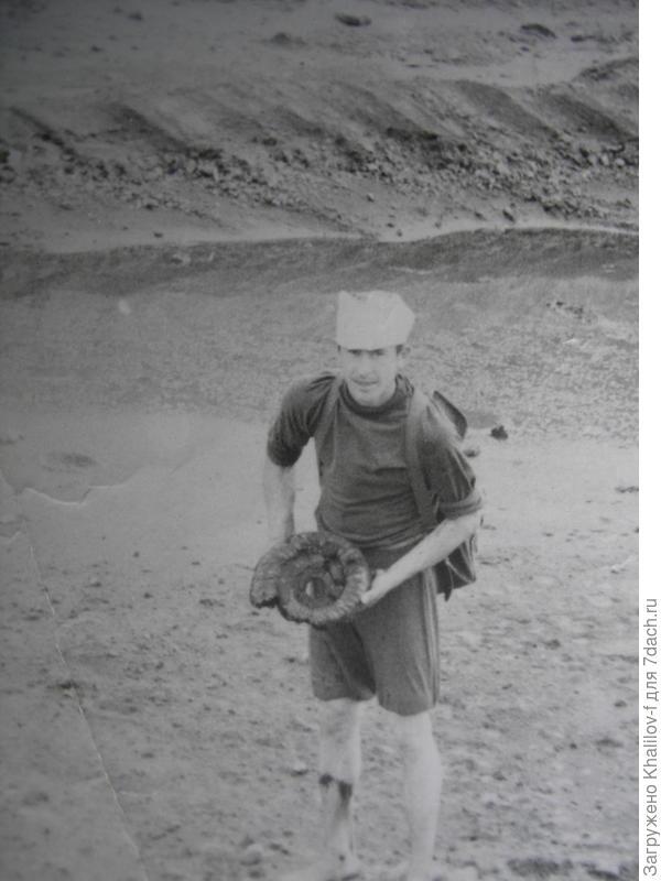 Я в фосфоритном карьере Воскресенского химкомбината. Нашёл огромную окаменелую Улитку.