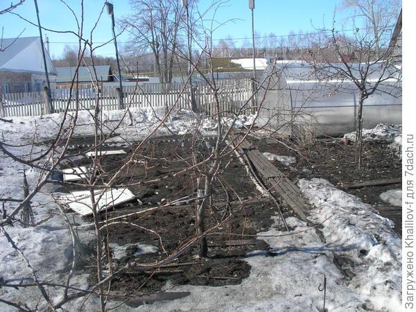 На зачерненном саду уже показалась земля, а за забором у соседей сплошной снег.