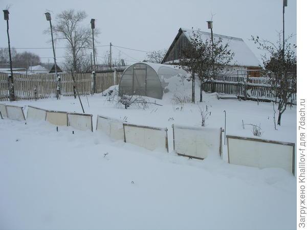 Теплица зимой. А такими щитами надо задерживать снег.