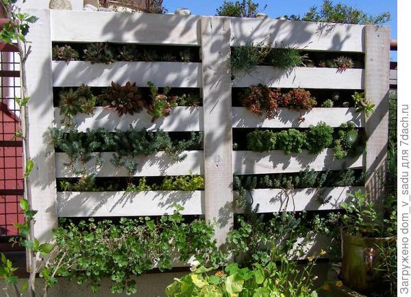 Вертикальный огород. Источник: nboldblog.files.wordpress.com