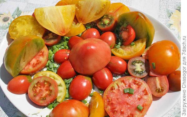 мой салат в июле