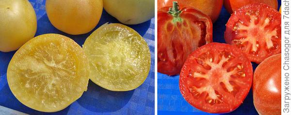 персики белый и красный