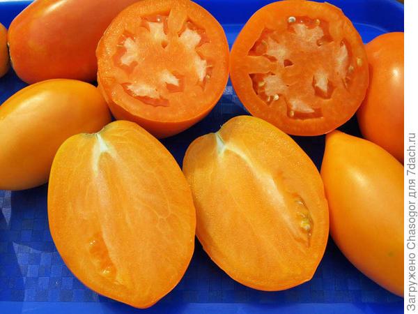 помидоры в разрезе
