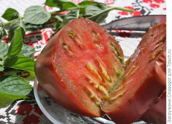 первый помидор 2015 года