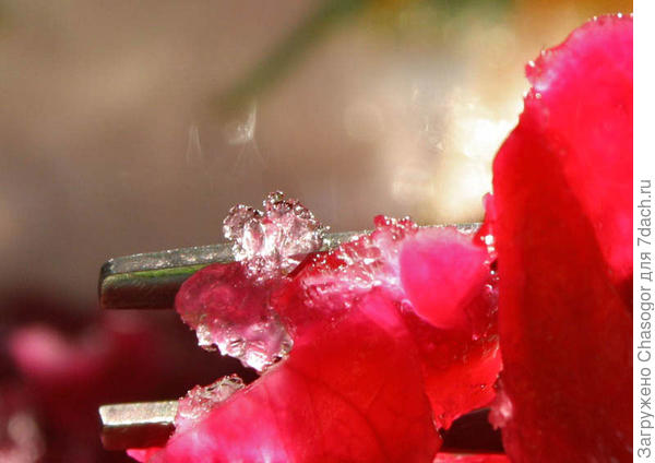 кристаллики
