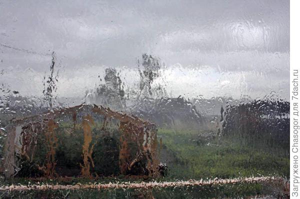 дождь за окном - огород поливать не надо!