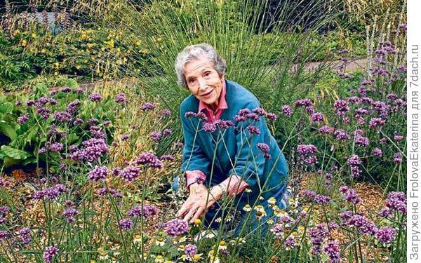 Сухой сад и его хозяйка - Бет Шатто.