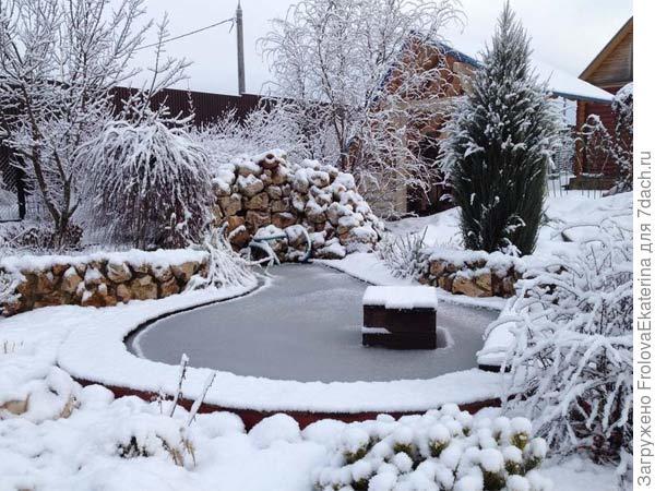 Садовый пруд зимой. Фото с сайта dacha6.ru