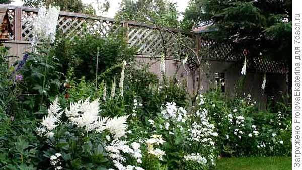 Уголок лунного сада. Фото с сайта  idealsad.com