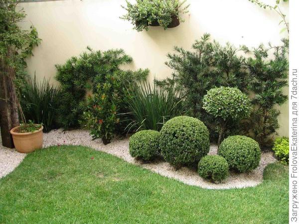 Сад с плавными асимметричными линиями. Фото с сайта olharmoderno.com