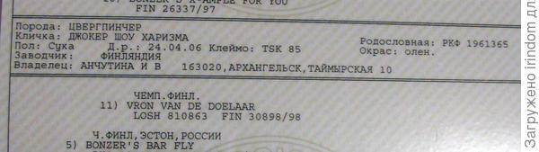 докУмент)))