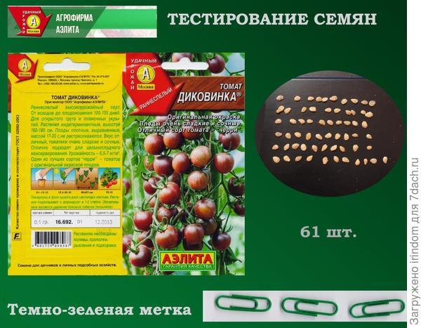 Томат Диковинка, семян - больше 60-ти. Растения - до 180 см высотой. Один из лучших сортов Черри