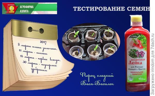 Вася-Василек - календарь