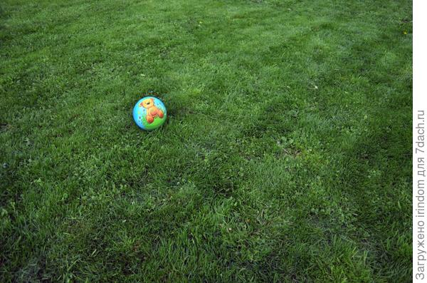 Или поиграть с внуком в футбол