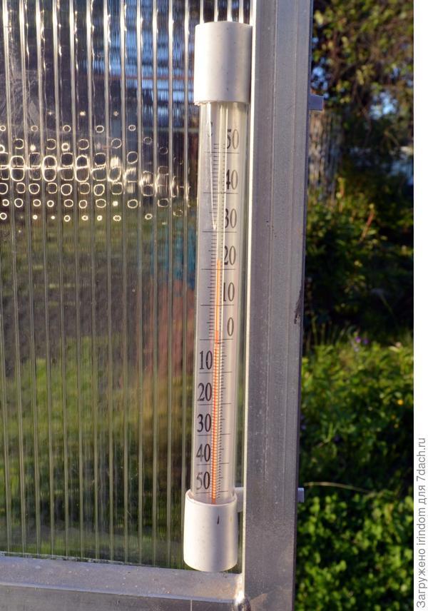 Температура днем, в пасмырный день +22С
