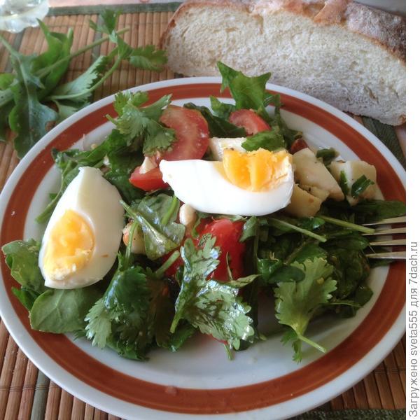 Салат из весенней зелени