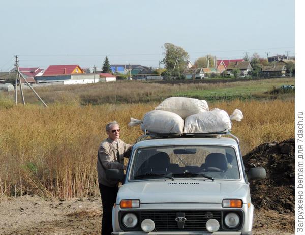 За дорогой деревенька.Через недельку весь перегной вывезут на колхозные поля.