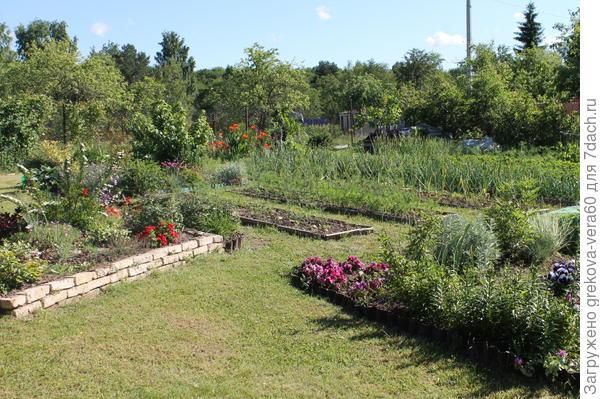 вид на огород
