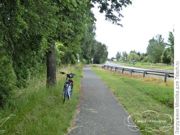 Велодорожка рядом с трассой