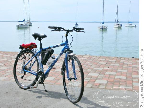 Рекомендую: после дачных дел устроить отпуск на велосипеде вокруг Балатона. Вам даже карта не понадобится - везде указатели и довольно активное велодвижение.