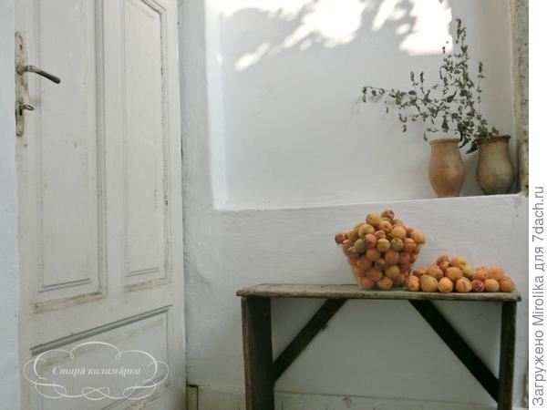 Сад не отставал от огорода. Был очень большой урожай абрикосов.