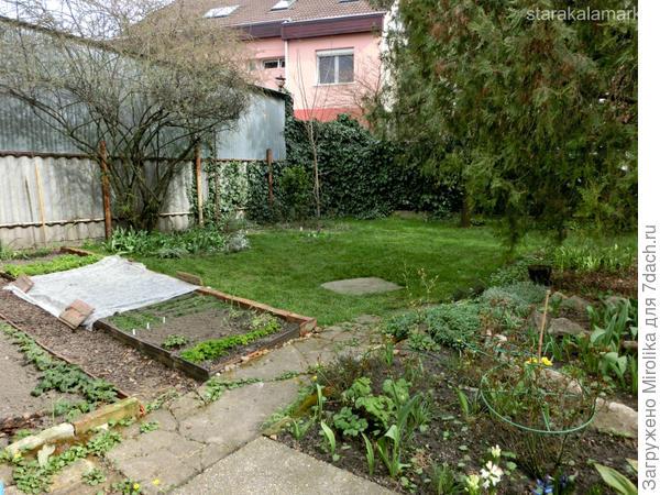 огород в центре Европы