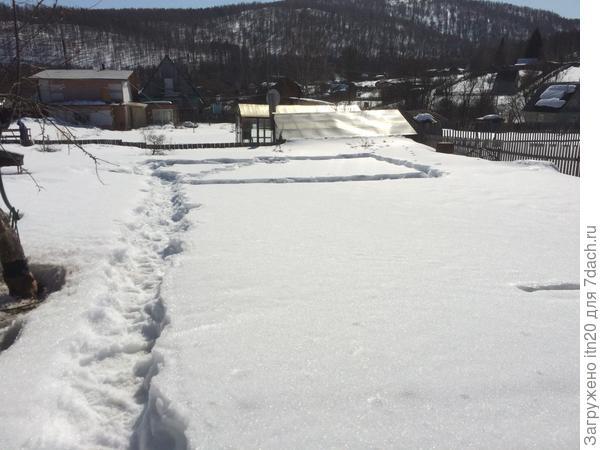 Где то здесь будем ставить. Снега внизу участка почти по пояс.