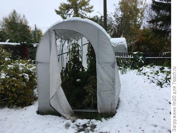 снег мокрый и тяжелый