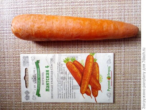 морковь РО
