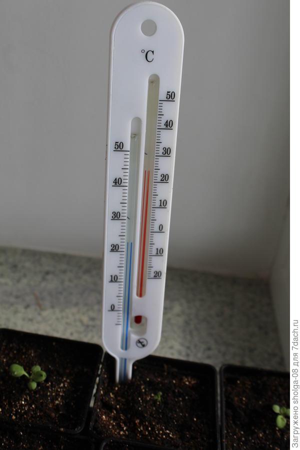 Температура воздуха и земли на подоконнике в дневное время.
