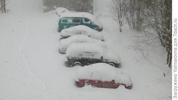 Снег за сутки . Сегодня 15 мая. (!!!)