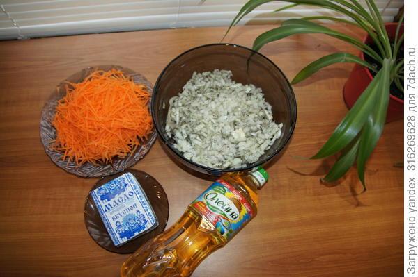 морковь лук