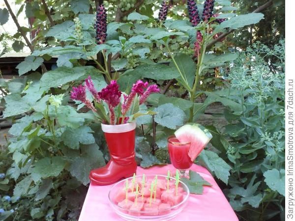в этом году садили арбузы, урожай нас очень порадовал был не только богатым, но и вкусным!
