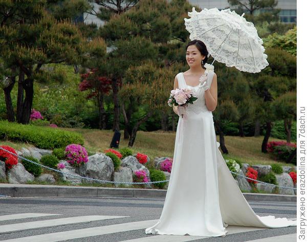 Невеста и азалии