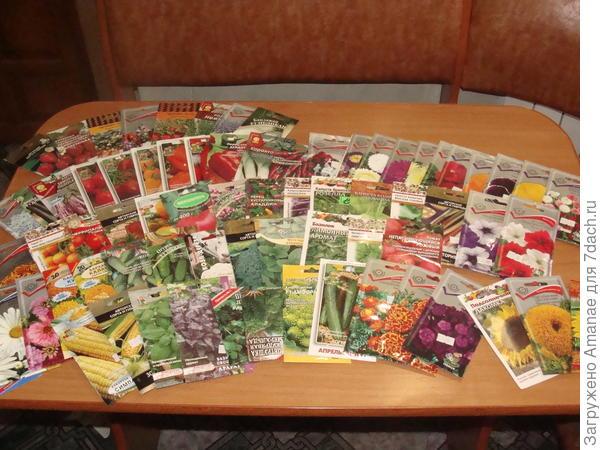 Это лишь малая часть семян. Каждый поход в магазин садоводства приплюсовывал сюда ещё 4-5 пачек.