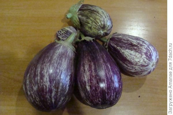 Урожай с трёх кустов. Самые крупные были по 1 плоду на растении, а мелких - по два.