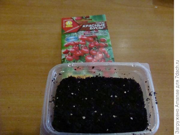 Посадка сухими семенами
