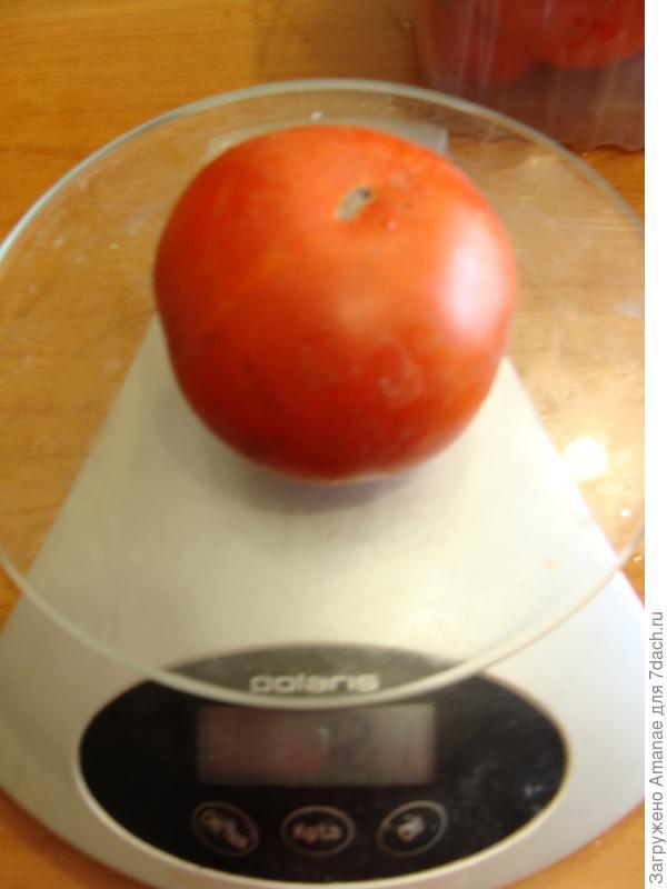 Одна помидорка весила 121 грамм